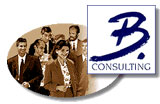 b-consulting